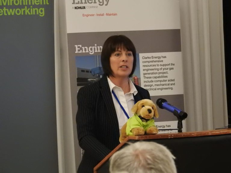 Vivienne Clements at Sunderland and North East Development Plans 2018